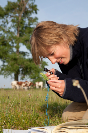 Ecologist surveying grassland